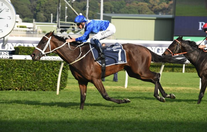2019 Sunshine Coast Guineas Results: Baccarat Baby The Next Winx?