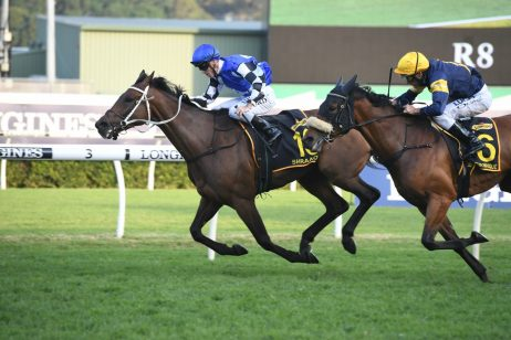 Shraaoh Shines to Earn Chris Waller Back to Back Sydney Cup Wins