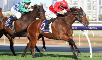 Transact earns a shot at South Australian Derby after all the way win in VRC St Leger