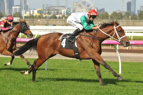 Hollindale Stakes Winner Life Less Ordinary Sets Sights on Doomben Cup