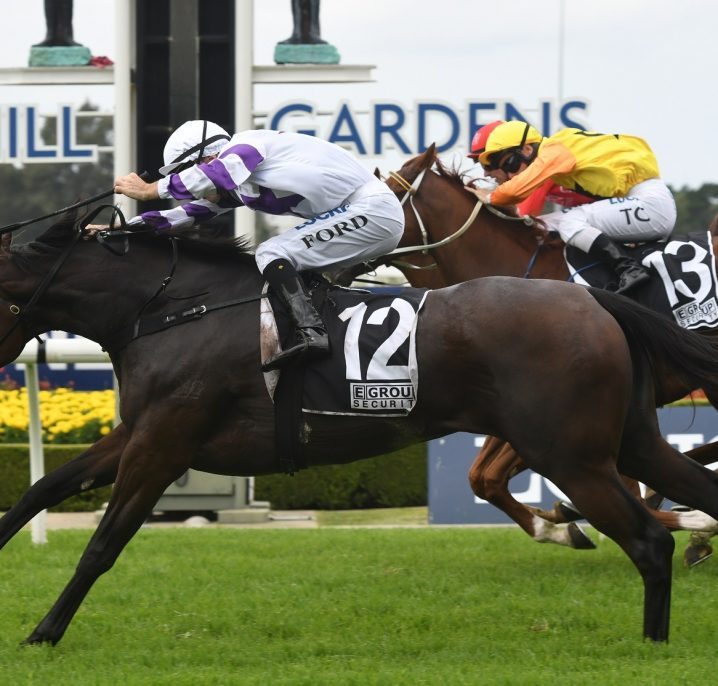 Spright Wears The Everest Hopes in Tatt's Tiara 2019