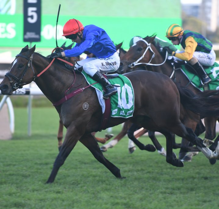 Latest Winterbottom Stakes 2020 Odds: Celebrity Queen Market Mover