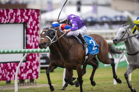 2019 Tattersall's Tiara Nominations: Five for Waller