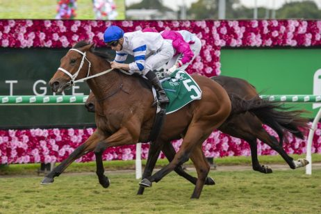 Kolding Makes it Four Straight with 2019 Queensland Guineas Win