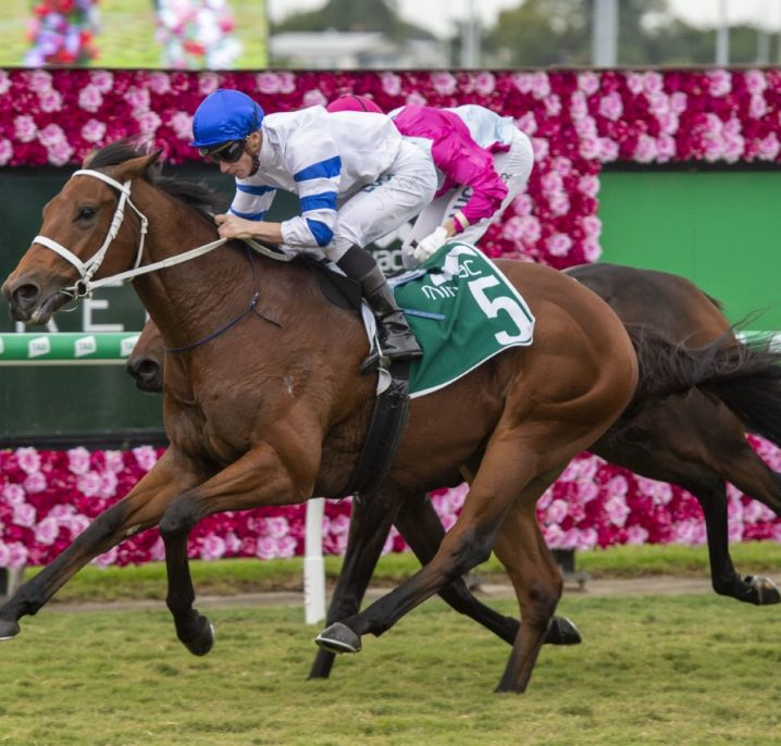 Sampson Can Surprise in Ipswich Cup 2019