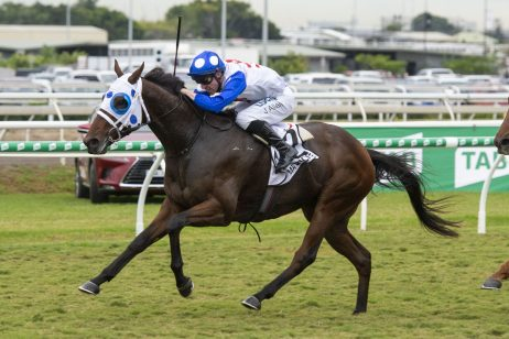 Mr Quickie Proves Too Strong in 2019 Queensland Derby