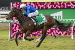 Trekking Leads 2020 Manikato Stakes Field & Odds