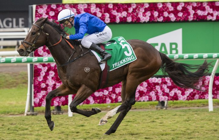 Winterbottom Stakes 2019 Odds Update: Stageman Market Mover