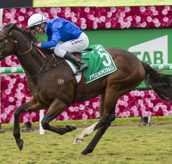 2020 Winterbottom Stakes Barriers & Betting Update