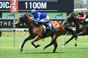 2019 Tatt's Tiara Field & Barriers: Favourites Draw Wide