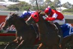 2019 Ipswich Cup Day: Scratchings & Track Report
