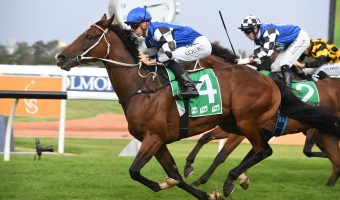 Tattersall's Cup Winner Vow And Declare Targets Melbourne Cup 2019