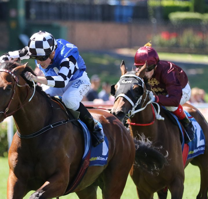 Caloundra Cup 2019 Field: Topweight Big Duke Draws Barrier 3