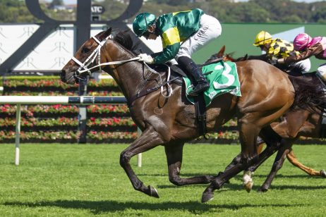 2019 Caloundra Cup Day: Race Scratchings & Track Report