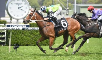 Byrne Chases Fourth Queensland Cup Win in 2019
