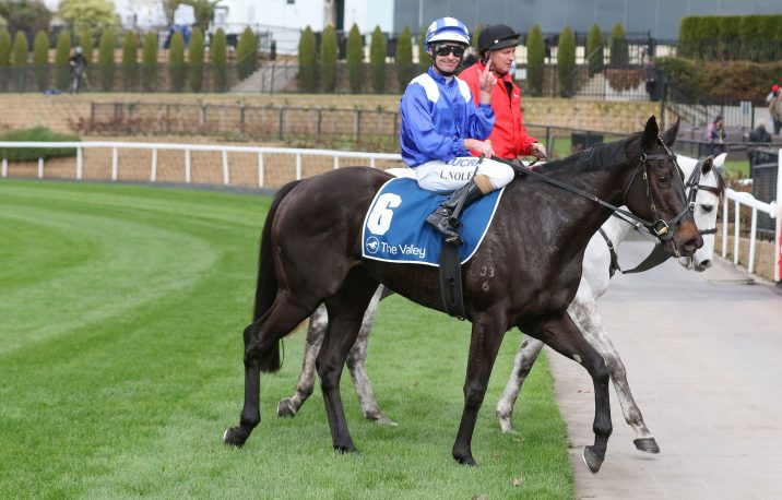 Potential 2019 Thousand Guineas Filly Taraayef Wins at The Valley