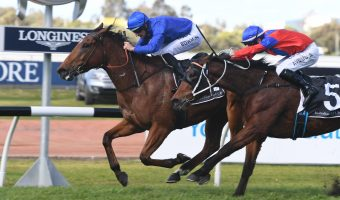 Alizee Early Favourite of 2020 Expressway Stakes Nominations