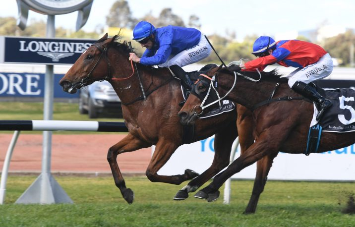 Alizee Leads 2020 Apollo Stakes Nominations & Odds