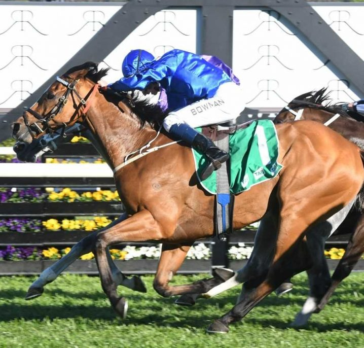 2019 Caulfield Cup Tips: Caulfield Cup Winner, Each Way & Roughie Picks