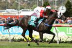 Trinder Happy With Top 3 Finish for Cox Plate Fav Mystic Journey
