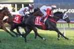 Ladbrokes Cox Plate 2019 Field & Barriers: Japan's Lys Gracieux Draws Wide