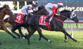 Cox Plate Favourite Mystic Journey Wins P.B. Lawrence First-Up