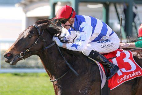 Horse Racing Today News - Races com au
