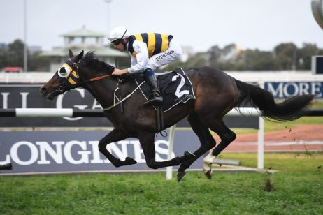 Punters Think Quick in Tulloch Stakes 2020 Betting