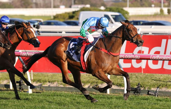 2019 Makybe Diva Stakes Field & Odds: Mystic Journey in Barrier 10
