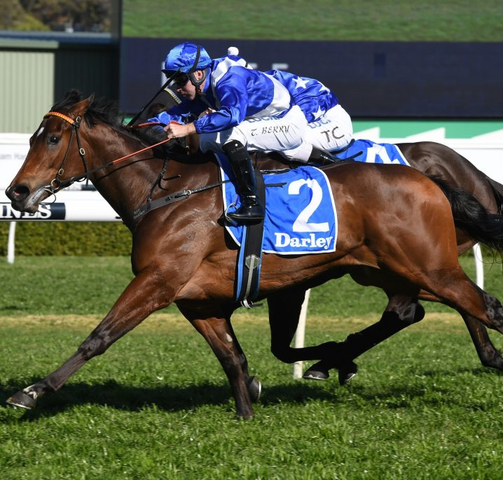 2020 Light Fingers Stakes Favourite Libertini Confirmed to Miss Black Caviar