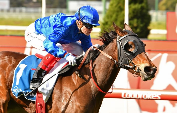 2019 Magic Millions Wyong 3YO & 4YO Stakes Field
