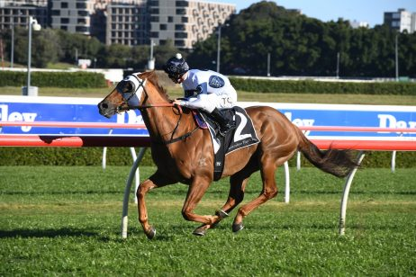 Clark Has No Doubt in Samadoubt for George Main Stakes 2019 Win