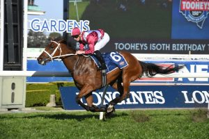2020 Memsie Stakes Day: Caulfield Race Scratchings & Track Report