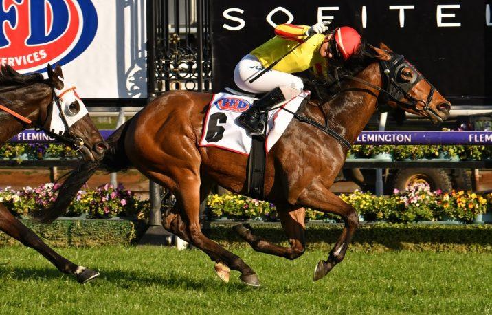 2020 Belmont Sprint Field & Betting: The Velvet King Narrow Favourite