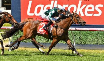 2019 Naturalism Stakes Field & Odds Update: Caulfield Cup Hopes on the Line