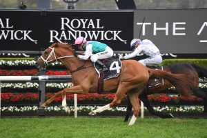 2019 Caulfield Cup Day: Scratchings & Track Report