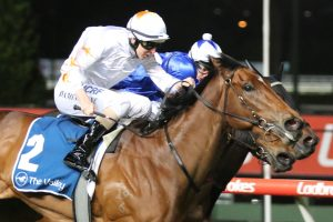 Loving Gaby Showed Signs of Improvement in Impressive Scarborough Stakes Win