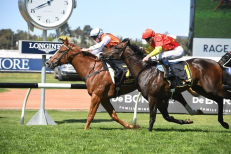 Expressway Stakes 2020 Standout Ready for WFA