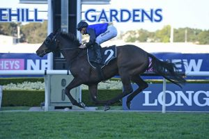 VRC Derby Favourite Shadow Hero Wins Gloaming Stakes 2019