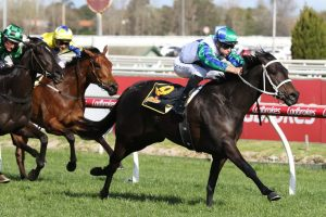 Thousand Guineas Odds Firm on Prelude Champ Acting