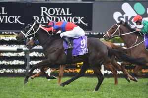 Verry Ellegant Wins Hill Stakes in a Photo Over Samadoubt