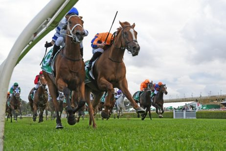 2019 Epsom Handicap Results: Kolding Too Good