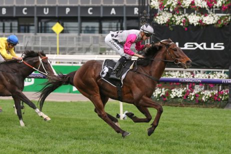 2019 Melbourne Cup Odds Update: Finche Raceday Favourite