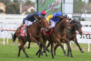 Cape Of Good Hope Horse Form (Photo: Ultimate Racing Photos) - Races.com.au