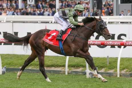 Thought Of That Firms in 2019 Victoria Derby Betting After Dominant Ladbrokes Classic Win
