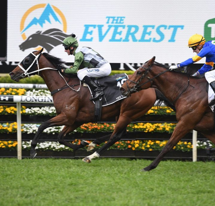 2019 The Everest Results: Yes Yes Yes Wins for Waller