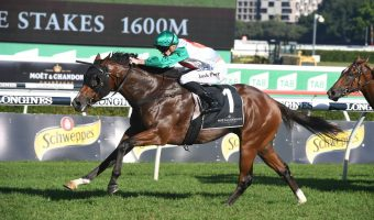 Castelvecchio Tops 2020 Australian Derby Field & Betting