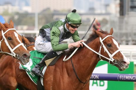 Australian Cup-Bound Kings Will Dream Tops Peter Young Stakes Odds