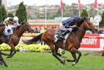 Melbourne Cup Calls for Moonee Valley Gold Cup Winner Hunting Horn