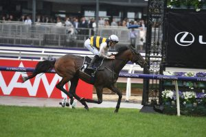 2019 Melbourne Cup Field to Feature Lexus Hotham Stakes Winner Downdraft
